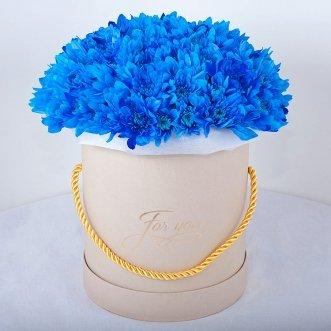 Синие хризантемы в коробке